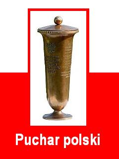 HANSA web - Puchar polski